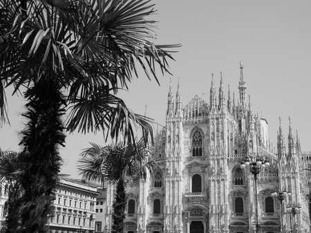 Duomo di Milano (meaning Milan Cathedral) church with palm trees in Milan, Italy in black and white Archivio Fotografico