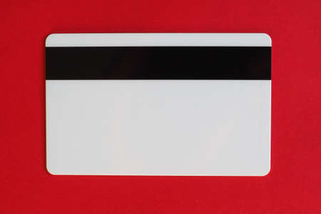 blank electronic card with a magnetic stripe
