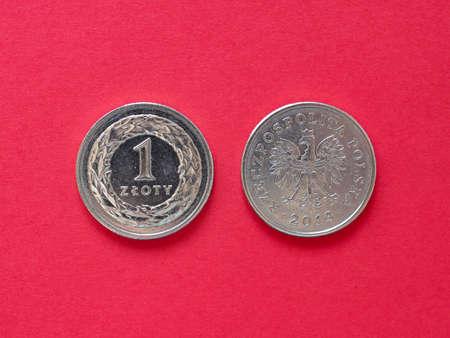 One Zloty coin money (PLN), currency of Poland Reklamní fotografie