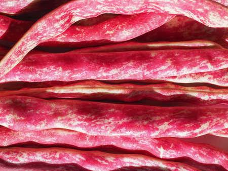 crimson beans variety of common bean (Phaseolus vulgaris) aka borlotti beans or cranberry beans legumes vegetables vegetarian food
