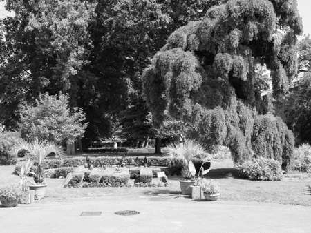 The Royal Botanical Gardens in Turin, Italy in black and white