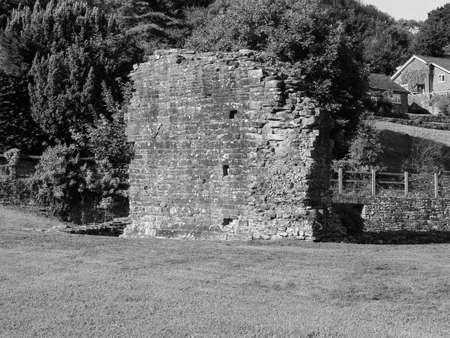 Tintern Abbey (Abaty Tyndyrn in Welsh) inner court ruins in Tintern, UK in black and white Stockfoto