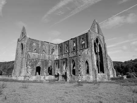 Tintern Abbey (Abaty Tyndyrn in Welsh) ruins in Tintern, UK in black and white