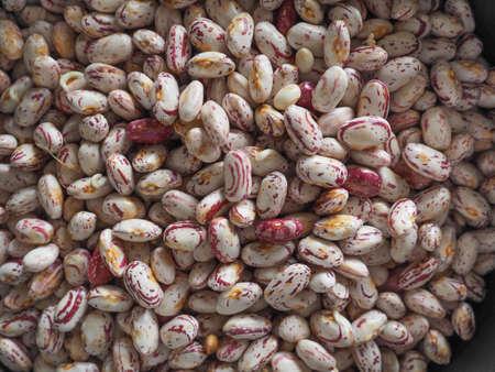 crimson beans, variety of common bean legumes vegetarian food (scientific name Phaseolus vulgaris) useful as a background
