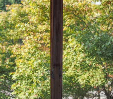 View from a window with focus on window sill and blurred trees background