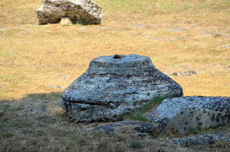 Greek temples of Paestum - 1 of 20 photo