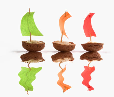 Boats made with nutshells