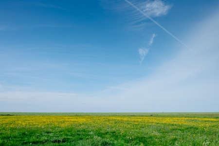 Sunny fields of the Netherlands