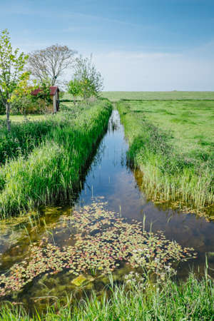 Countryside with water canal in the Netherlands