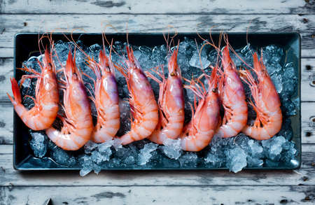 epicurean: Raw shrimp tray with ice on blue wooden table Stock Photo