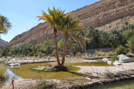 waterpool: Waterpool in Wadi Bani Khalid Oman Stock Photo