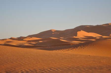 inhospitable: Moroccan desert