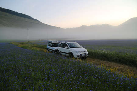 fiat: Fiat Panda in the middle of fields and flowers in Piano grande