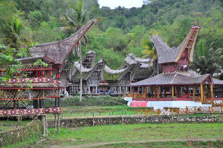 toraja: Typical Torajan houses, called Tongkonan