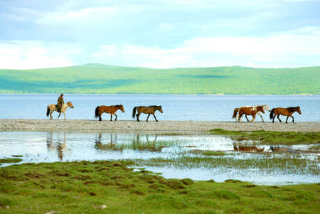 reflaction: Sherpherd by a lake in northern Mongolia