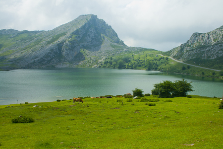Mountain lakes in summer cloudy day. Covadonga. Banco de Imagens - 120659249