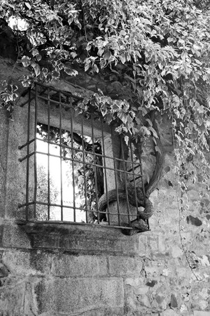 Creeper going through a window, black and white view