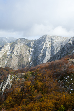 Mountains with beech forests in the north of Spain. Banco de Imagens