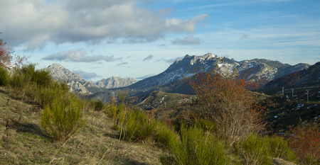 Rose hip plant with red fruits against a mountains landscape in autum Banco de Imagens - 120659090