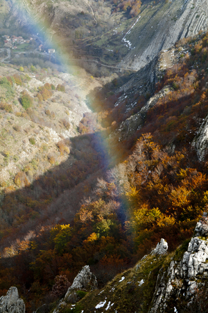 Rainbow closeup with beech forests in background.