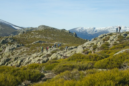hikers taking pictures of a herd of wild goats at guadarrama range national park in Spain Banco de Imagens - 120659078