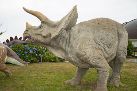 Realistic model of Triceratops and side profile view.