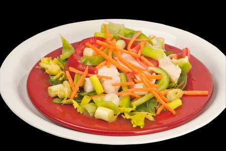 salad made with white chicken breast, tomatoes, carrots, lettuce, spring onions and bell pepper. Served on red and white plates. Clipping path around white plate.