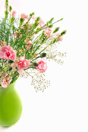 pink carnations in a green vase on a white background.