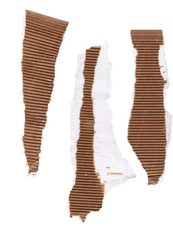 scan paper: High resolution scan of three pieces of ripped corrugated cardboard packaging showing white edging that is attached to the paper. Isolated on white.