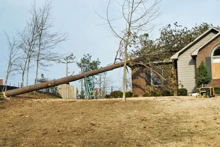 damaged roof: Tornado damaged house with a fallen pine tree on its roof after an EF2 tornado went through this southern USA neighborhood in Columbus GA in March. Editorial