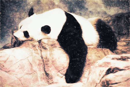 relaxed: Giant Panda bear is lying on some rocks in a relaxed posture as he sleeps. This is computer generated art from a photograph. Stock Photo