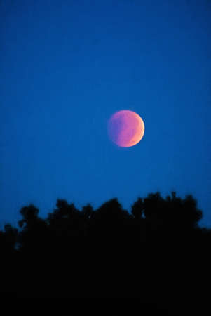 The blood moon is setting over the top of a group of trees. This is computer generated art from a photograph with a colored pencil artistic effect.