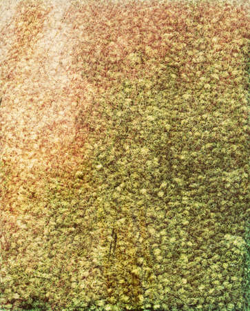 Green colored carpet sample with textured effects. This is a high resolution scan which shows all the detail.