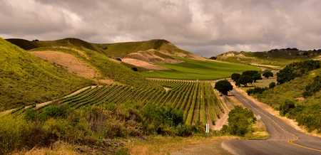 wine road: California wine country and beautiful landscape