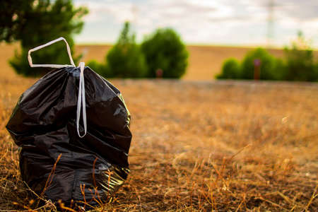 Garbage bags in the clean forest with a sunset in the background