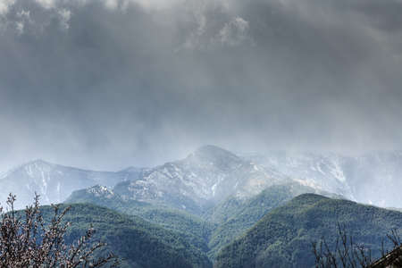 snow capped mountains: cherry blossoms and snow capped mountains scenery