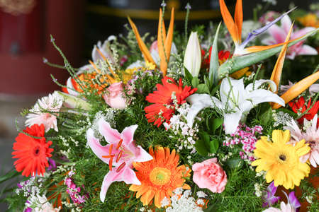 all kinds of flowers stock photos  pictures. royalty free all, Beautiful flower