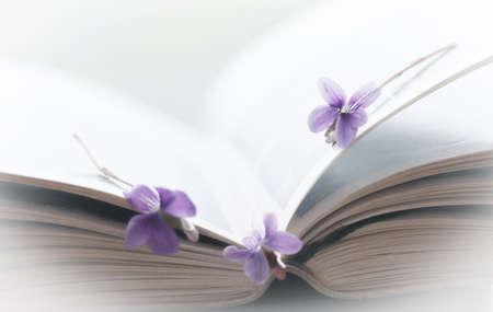 frail: Violet flower and open book, art background
