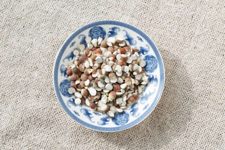 semen: The blue and white porcelain plate with Gorgon euryale seed