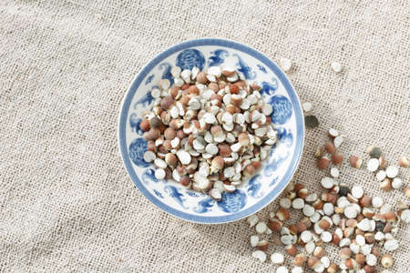 semen: The blue and white porcelain plate with �Gorgon euryale seed