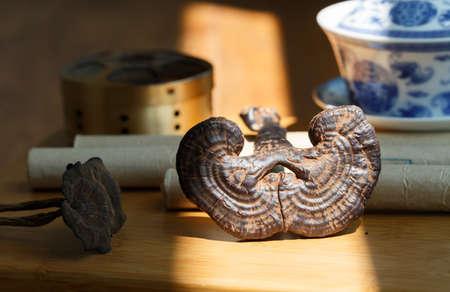 medicina tradicional china: Medicamentos y Productos Sanitarios chinas tradicionales, Ganoderma lucidum