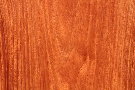 rosewood: Mahogany texture