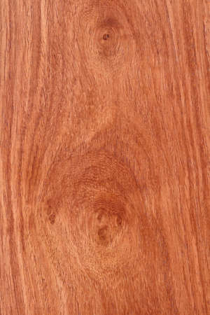 rosewood: Mahogany detail texture