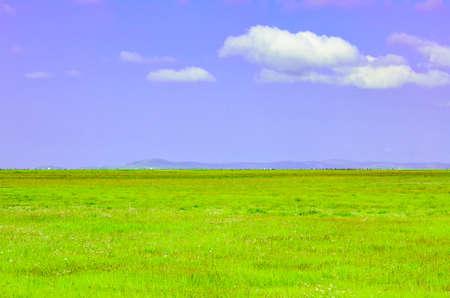 Blue sky, white clouds and grassland Stock Photo