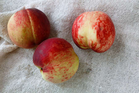 Fresh peaches are on white background. Imagens