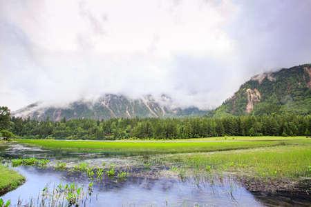 Alpine wetland landscape under white clouds