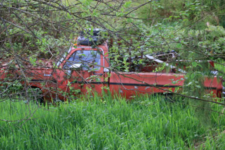 An abandoned red truck in a forest. Stock Photo