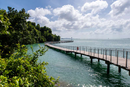 Chek Jawa Broadwalk Jetty, wooden platform in mangrove forest wetlands overlooking sea on Pulau Ubin Island, Singapore.