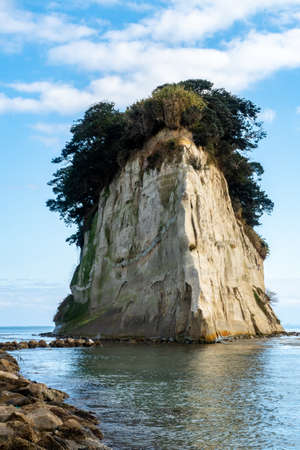 Mitsukejima diamond shaped island with plants and trees on top of the rock on Noto Peninsula, Japan, portrait view.