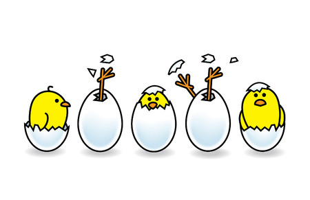 peering: Five Easter Chicks Hatching from White Eggs